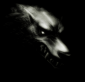 Profile picture for user PhantomWolf
